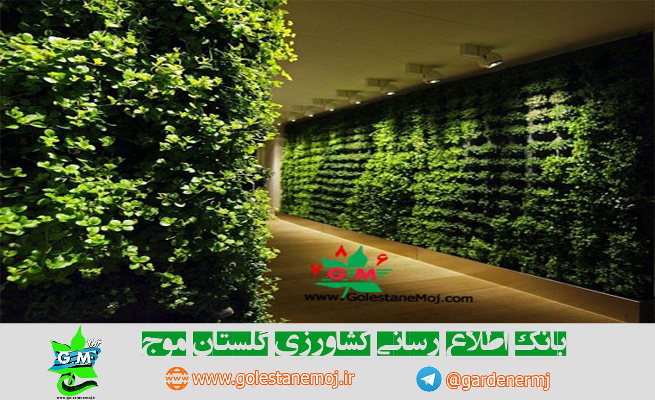 دیوار سبز- Green wall